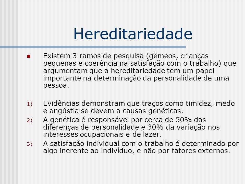 Hereditariedade Existem 3 ramos de pesquisa (gêmeos, crianças pequenas e coerência na satisfação com o trabalho) que argumentam que a hereditariedade