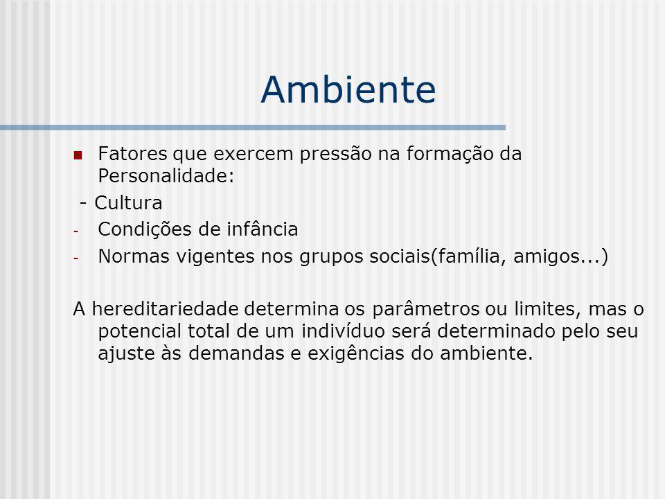 Ambiente Fatores que exercem pressão na formação da Personalidade: - Cultura - Condições de infância - Normas vigentes nos grupos sociais(família, ami