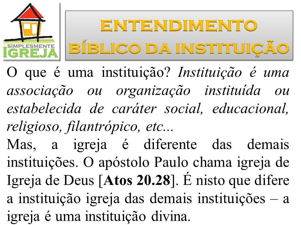 O que é uma instituição? Instituição é uma associação ou organização instituída ou estabelecida de caráter social, educacional, religioso, filantrópic