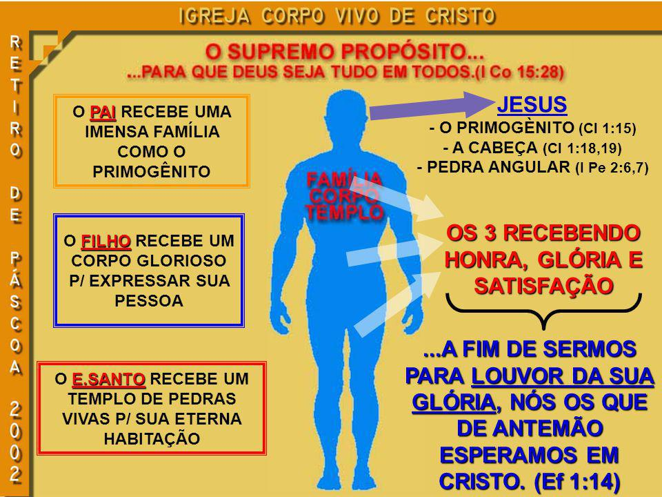 PAI O PAI RECEBE UMA IMENSA FAMÍLIA COMO O PRIMOGÊNITO FILHO O FILHO RECEBE UM CORPO GLORIOSO P/ EXPRESSAR SUA PESSOA E.SANTO O E.SANTO RECEBE UM TEMPLO DE PEDRAS VIVAS P/ SUA ETERNA HABITAÇÃO JESUS - O PRIMOGÈNITO (Cl 1:15) - A CABEÇA (Cl 1:18,19) - PEDRA ANGULAR (I Pe 2:6,7) OS 3 RECEBENDO HONRA, GLÓRIA E SATISFAÇÃO...A FIM DE SERMOS PARA LOUVOR DA SUA GLÓRIA, NÓS OS QUE DE ANTEMÃO ESPERAMOS EM CRISTO.