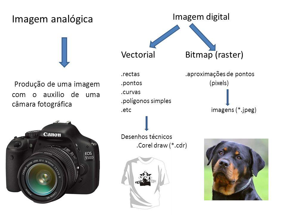 Conceitos Básicos Trabalhamos basicamente com dois tipos de informação: Visual e Descritiva.