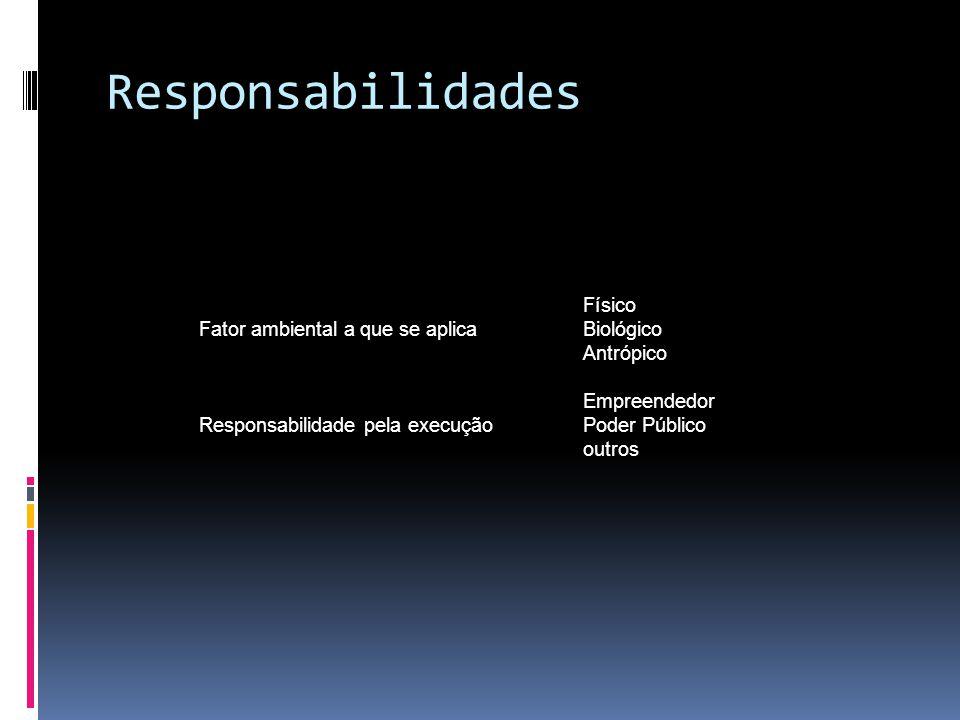 Responsabilidades Físico Fator ambiental a que se aplicaBiológico Antrópico Empreendedor Responsabilidade pela execuçãoPoder Público outros