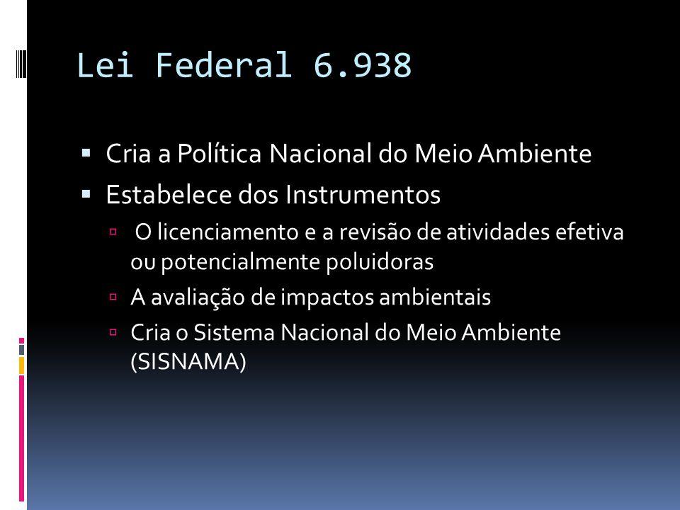 Lei Federal 6.938  Cria a Política Nacional do Meio Ambiente  Estabelece dos Instrumentos  O licenciamento e a revisão de atividades efetiva ou potencialmente poluidoras  A avaliação de impactos ambientais  Cria o Sistema Nacional do Meio Ambiente (SISNAMA)
