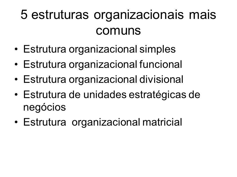 5 estruturas organizacionais mais comuns Estrutura organizacional simples Estrutura organizacional funcional Estrutura organizacional divisional Estru