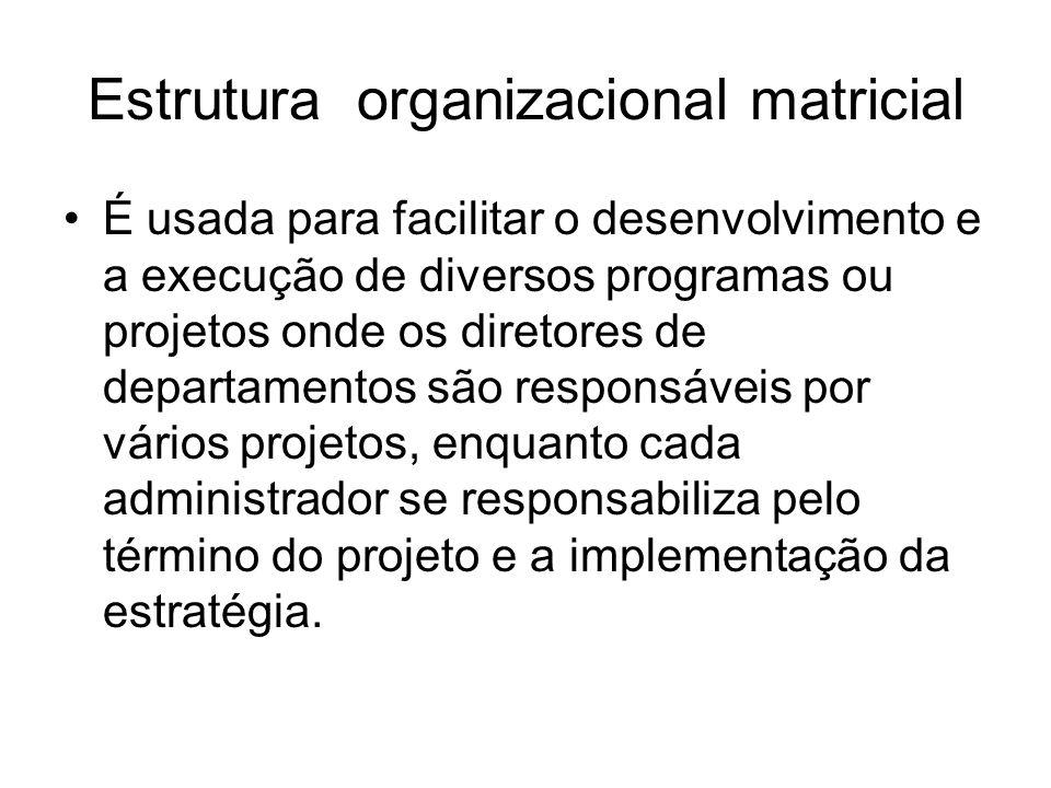 Estrutura organizacional matricial É usada para facilitar o desenvolvimento e a execução de diversos programas ou projetos onde os diretores de depart