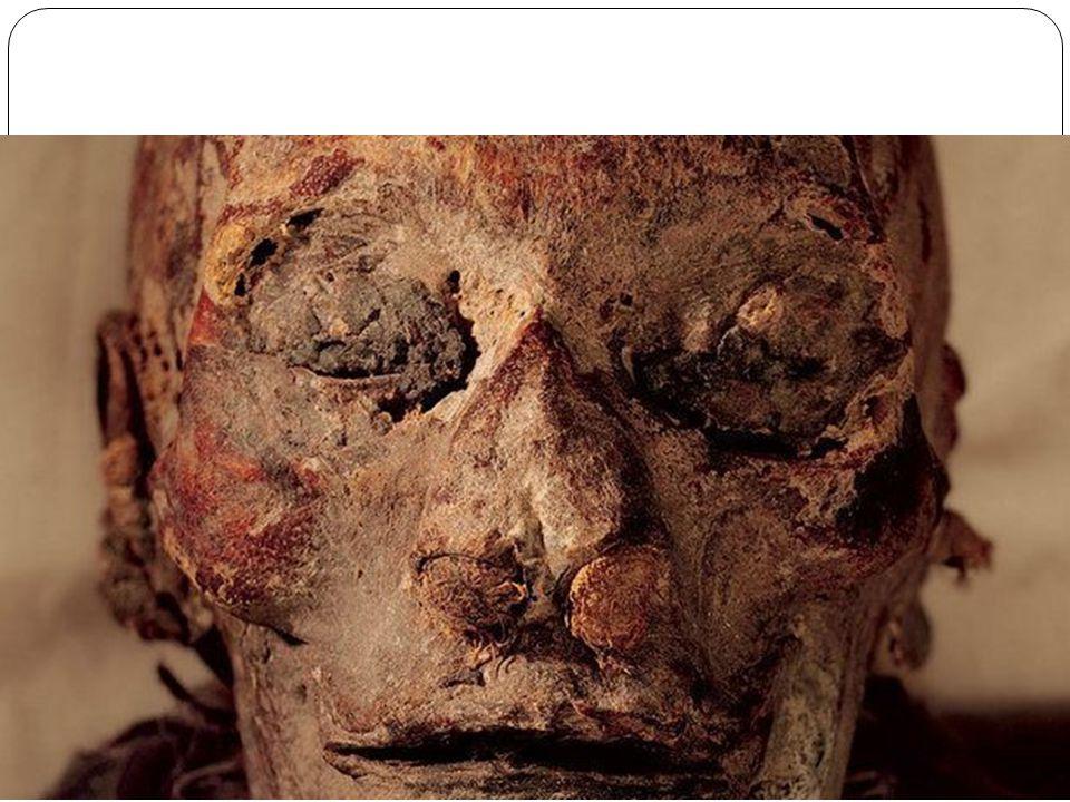 A descoberta da múmia de Hatchepsut, considerada o maior feito desde a localização da tumba de Tutancâmon, em 1922, foi oficialmente anunciada em 27 d