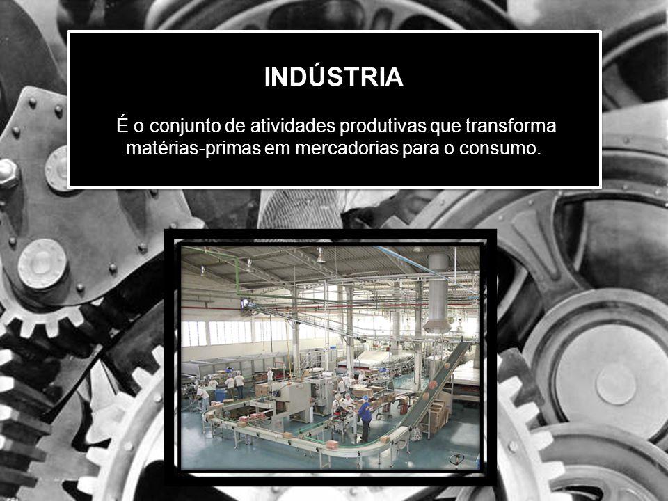 INDÚSTRIA INDÚSTRIA É o conjunto de atividades produtivas que transforma matérias-primas em mercadorias para o consumo.