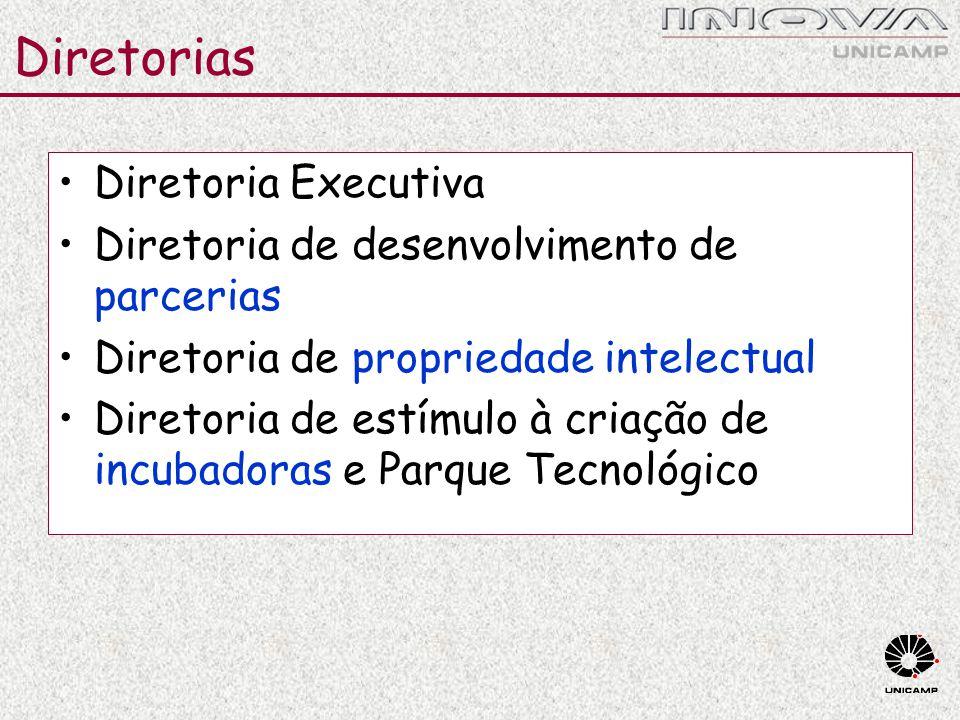 Diretorias Diretoria Executiva Diretoria de desenvolvimento de parcerias Diretoria de propriedade intelectual Diretoria de estímulo à criação de incub