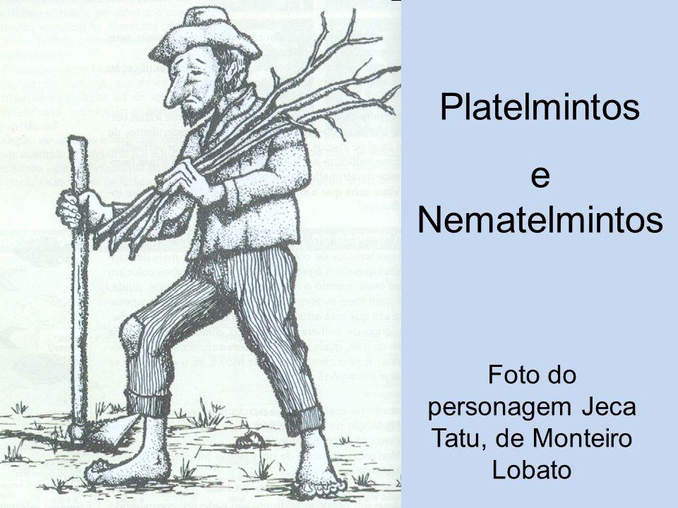 Foto do personagem Jeca Tatu, de Monteiro Lobato Platelmintos e Nematelmintos