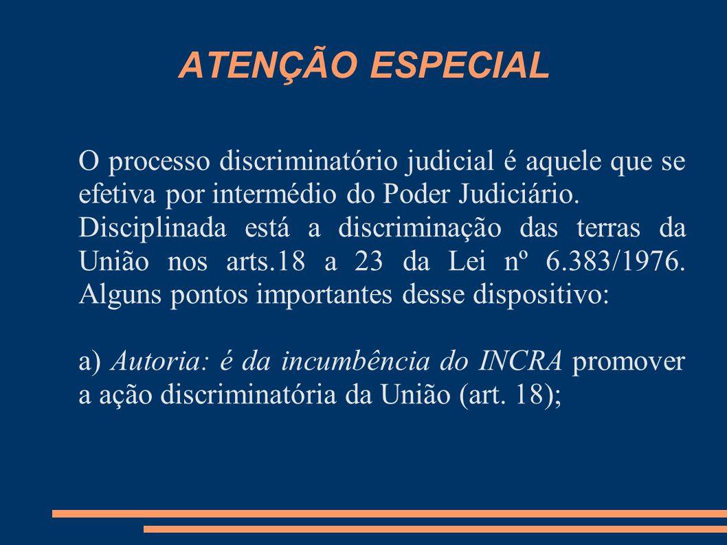 ATENÇÃO ESPECIAL O processo discriminatório judicial é aquele que se efetiva por intermédio do Poder Judiciário.