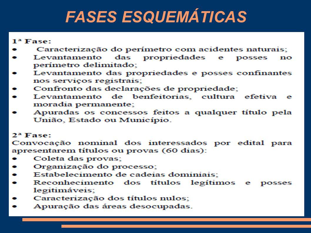 FASES ESQUEMÁTICAS