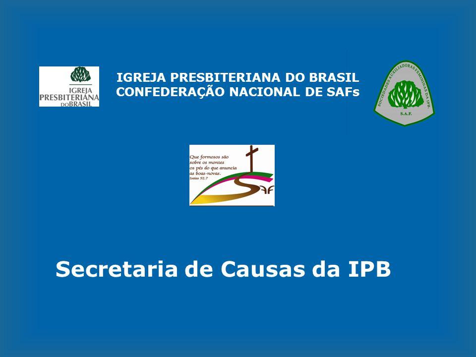 IGREJA PRESBITERIANA DO BRASIL CONFEDERAÇÃO NACIONAL DE SAFs Secretaria de Causas da IPB