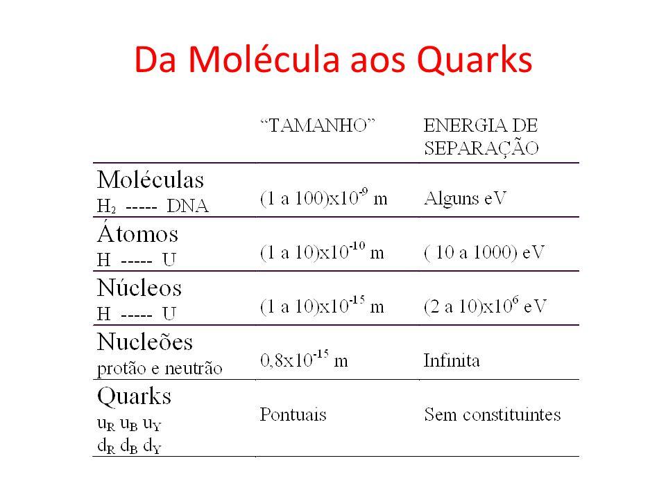 Da Molécula aos Quarks