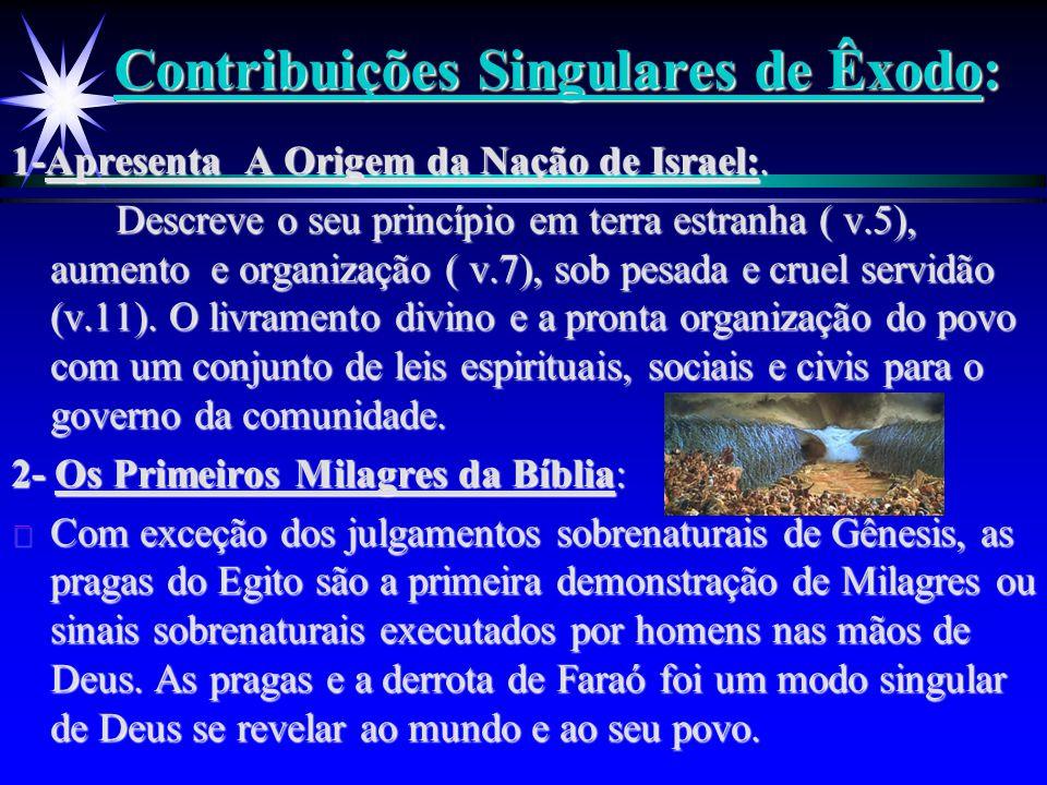 Contribuições Singulares de Êxodo: 1-Apresenta A Origem da Nação de Israel:. Descreve o seu princípio em terra estranha ( v.5), aumento e organização