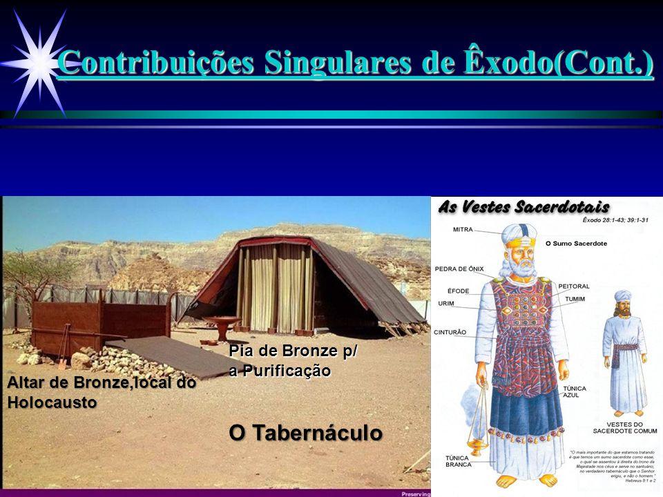 Contribuições Singulares de Êxodo(Cont.) O Tabernáculo Altar de Bronze,local do Holocausto Pia de Bronze p/ a Purificação Tabernáculo