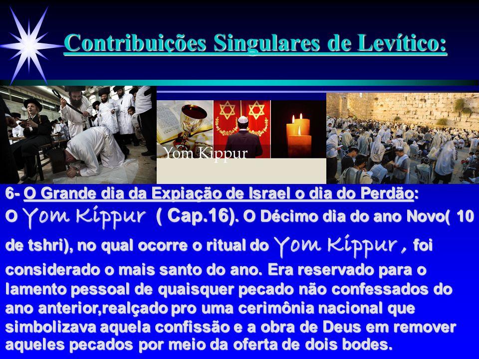 Contribuições Singulares de Levítico: 6- O Grande dia da Expiação de Israel o dia do Perdão: O Yom Kippur ( Cap.16). O Décimo dia do ano Novo( 10 de t