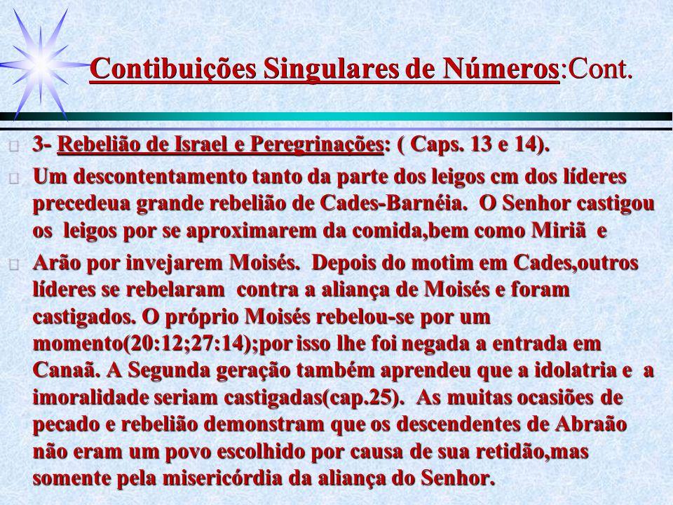 Contibuições Singulares de Números:Cont. ä 3- Rebelião de Israel e Peregrinações: ( Caps. 13 e 14). ä Um descontentamento tanto da parte dos leigos cm