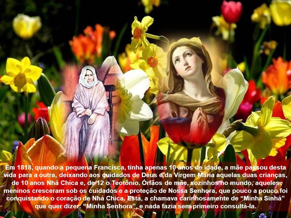 O tão esperado decreto das virtudes heróicas da Serva de Deus Nhá Chica foi concedido pelo Papa Bento XVI.
