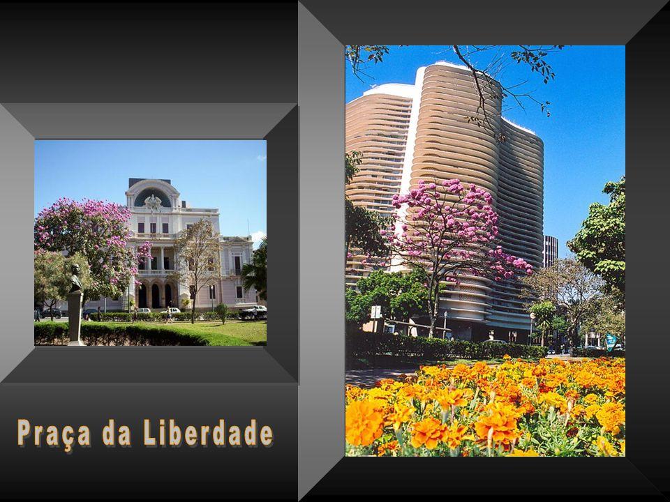 Por falta de espaço não foi possível retratar Belo Horizonte em toda sua dimensão e grandeza.