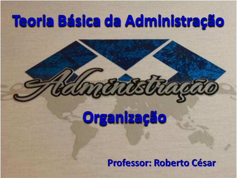 Teoria Básica da Administração Professor: Roberto César OrganizaçãoOrganização