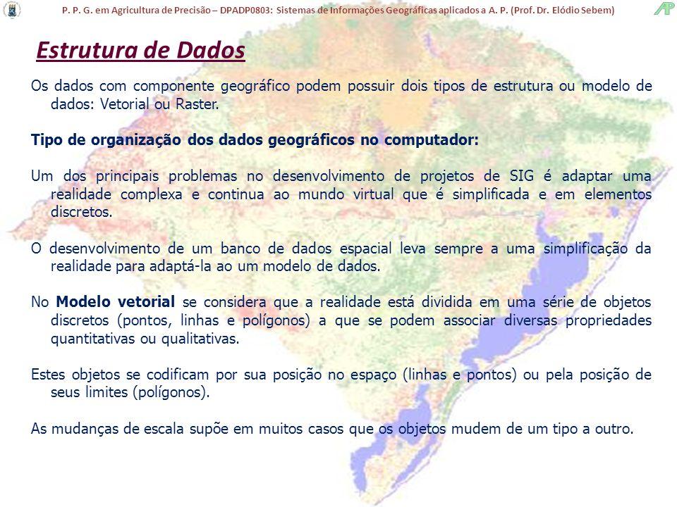 P. P. G. em Agricultura de Precisão – DPADP0803: Sistemas de Informações Geográficas aplicados a A. P. (Prof. Dr. Elódio Sebem) Estrutura de Dados Os