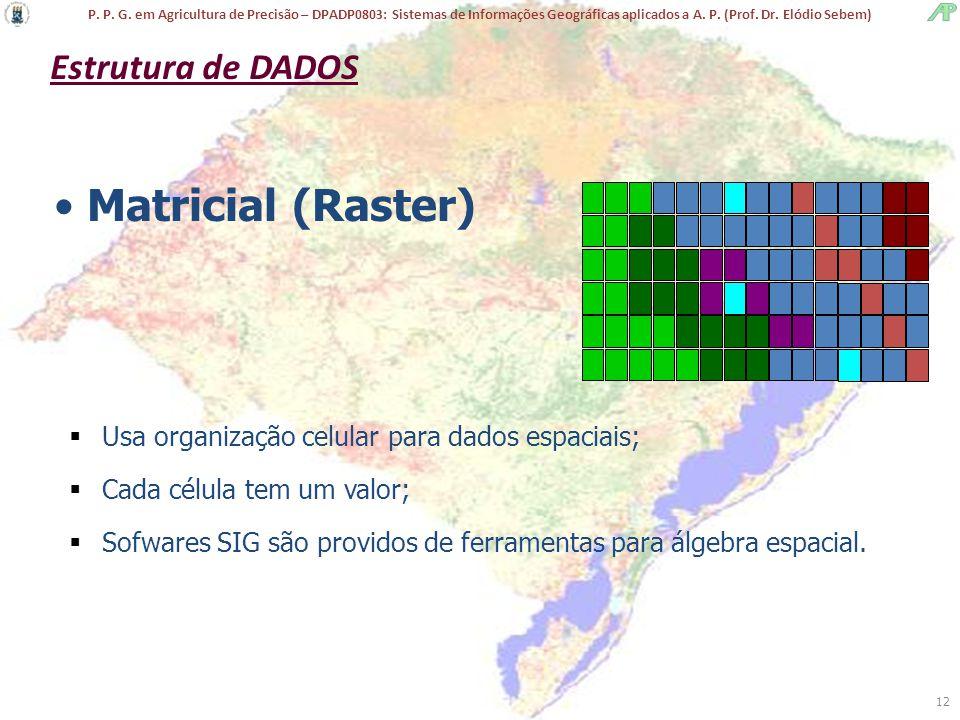 P. P. G. em Agricultura de Precisão – DPADP0803: Sistemas de Informações Geográficas aplicados a A. P. (Prof. Dr. Elódio Sebem) 12 Matricial (Raster)