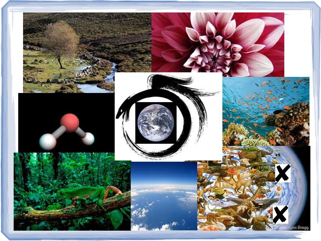 O que fazer para garantir a existência do homo sapiens sapiens?