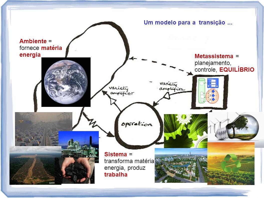 Metassistema = planejamento, controle, EQUILÍBRIO Sistema = transforma matéria energia, produz trabalha Ambiente = fornece matéria energia Um modelo p