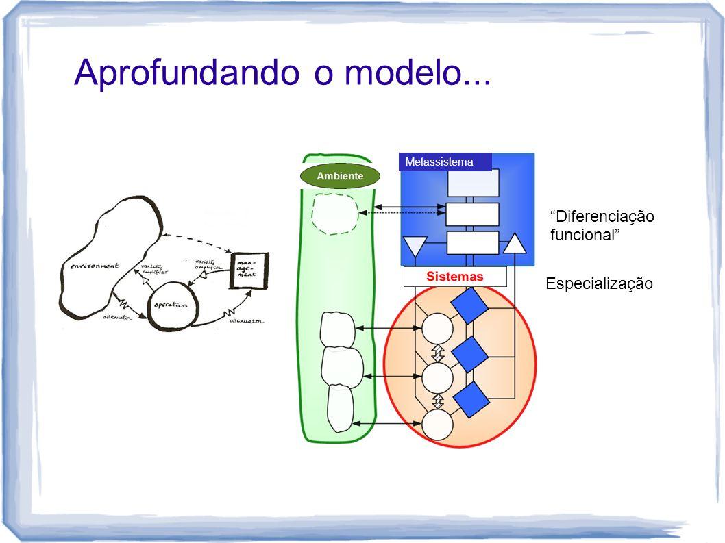 """Aprofundando o modelo... Metassistema """"Diferenciação funcional"""" Especialização"""