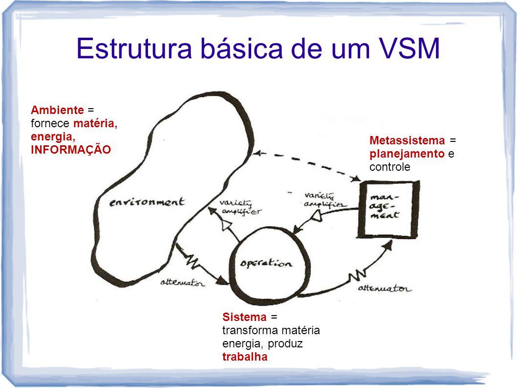 Estrutura básica de um VSM Metassistema = planejamento e controle Sistema = transforma matéria energia, produz trabalha Ambiente = fornece matéria, en