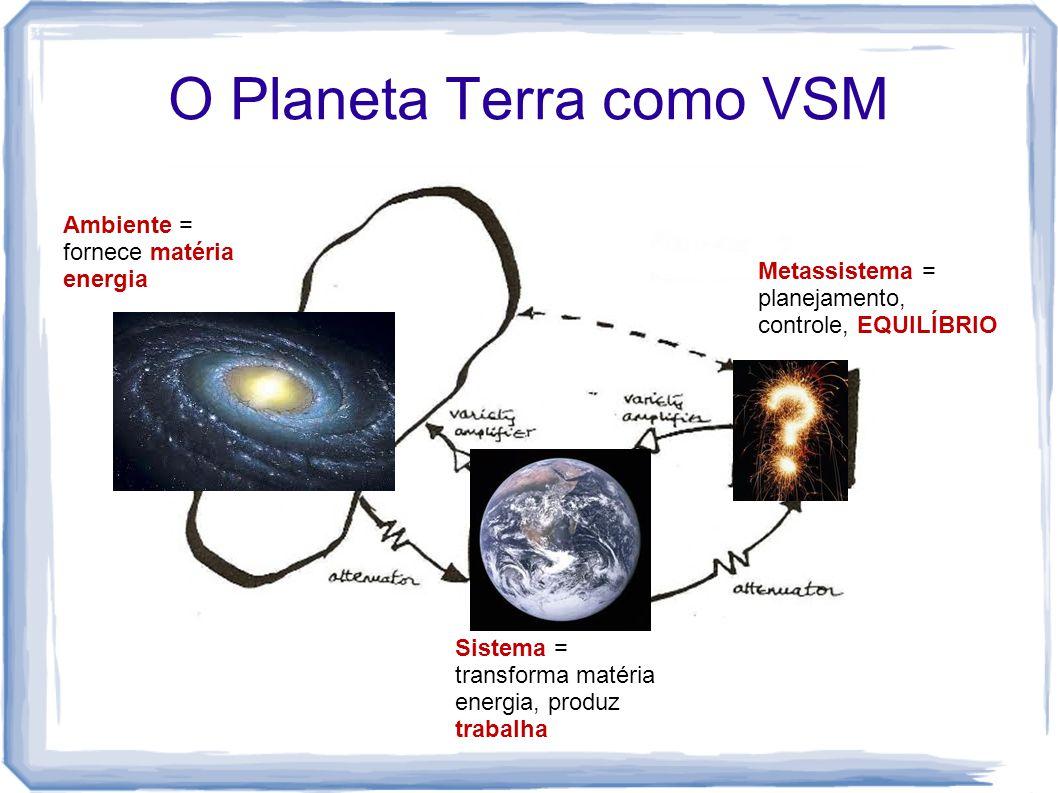 O Planeta Terra como VSM Metassistema = planejamento, controle, EQUILÍBRIO Sistema = transforma matéria energia, produz trabalha Ambiente = fornece ma