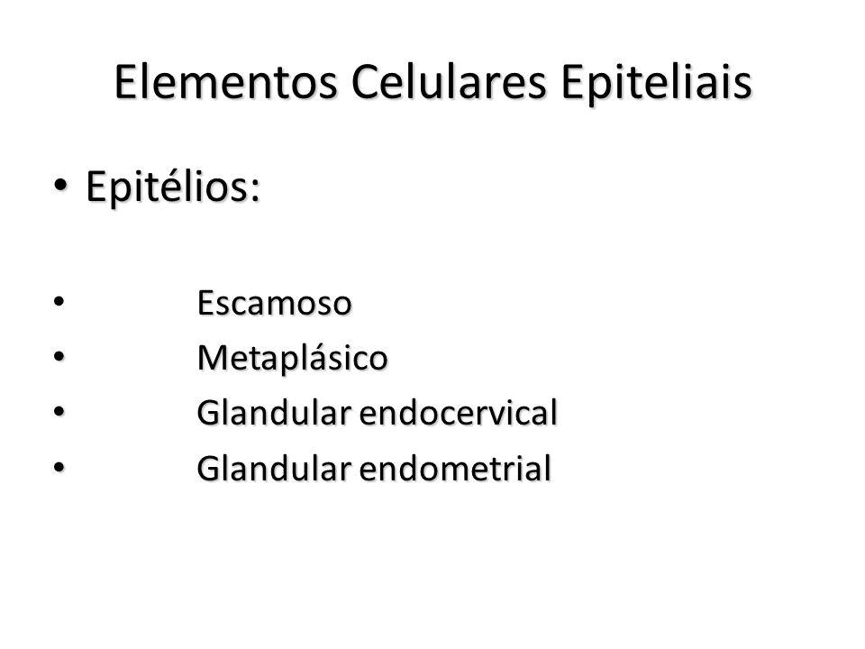Elementos Celulares Epiteliais Epitélios: Epitélios: Escamoso Metaplásico Metaplásico Glandular endocervical Glandular endocervical Glandular endometrial Glandular endometrial