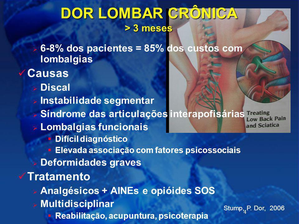 4 Stump, P. Dor, 2006 DOR LOMBAR CRÔNICA > 3 meses  6-8% dos pacientes = 85% dos custos com lombalgias Causas  Discal  Instabilidade segmentar  Sí