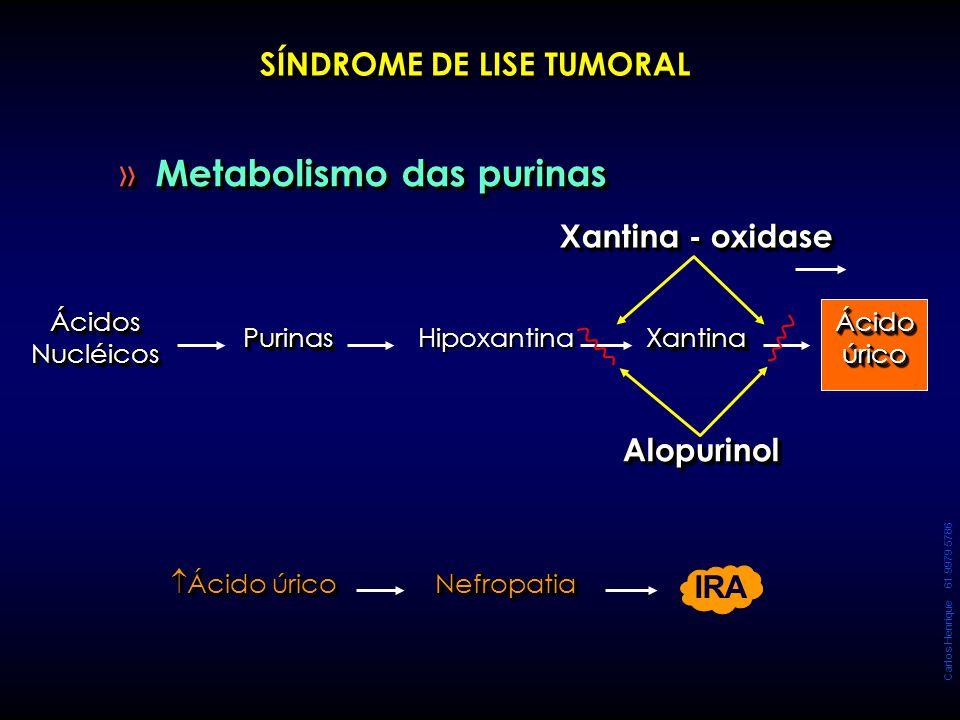 Carlos Henrique 61 9979 5786 » Metabolismo das purinas SÍNDROME DE LISE TUMORAL Ácidos Nucléicos PurinasPurinas Hipoxantina XantinaXantina Ácido úrico