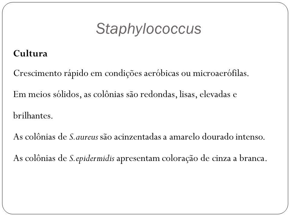 Streptococcus e Enterococcus Cocos Gram positivos com 0,5 - 1  m Imóveis Crescimento na faixa de 37ºC Crescem com dificuldade nos meios usuais S.
