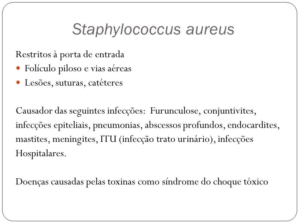Somente estreptococos dos grupo B (S.