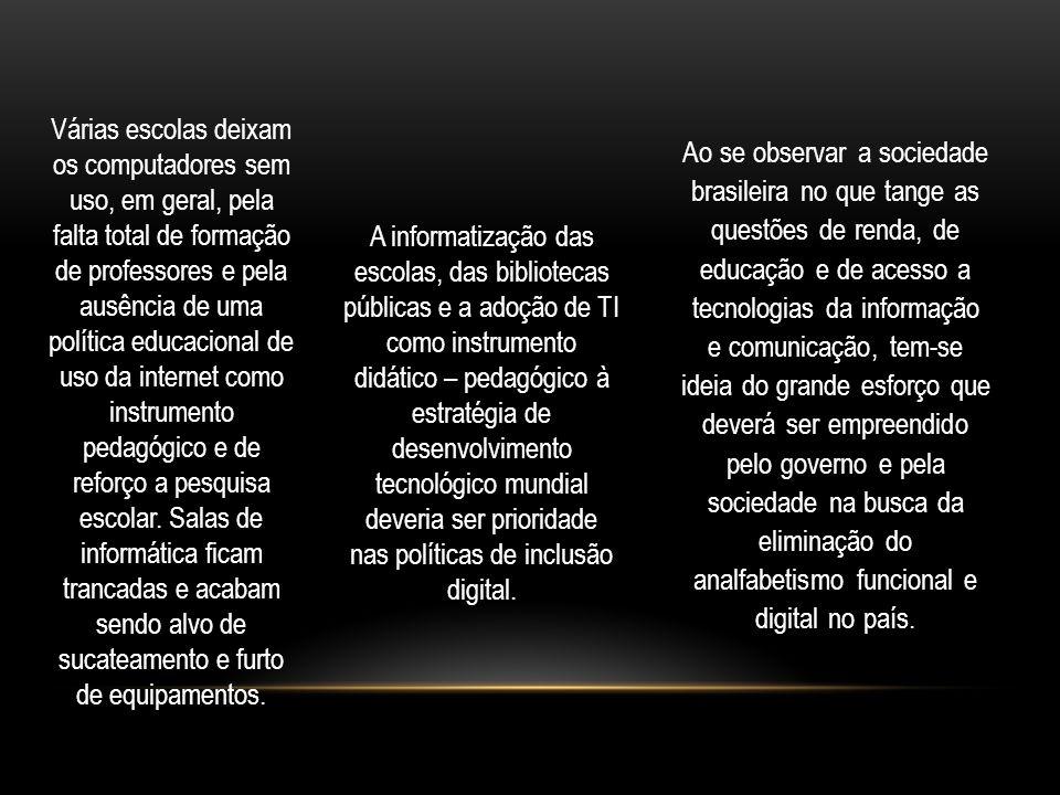 Ao se observar a sociedade brasileira no que tange as questões de renda, de educação e de acesso a tecnologias da informação e comunicação, tem-se ideia do grande esforço que deverá ser empreendido pelo governo e pela sociedade na busca da eliminação do analfabetismo funcional e digital no país.
