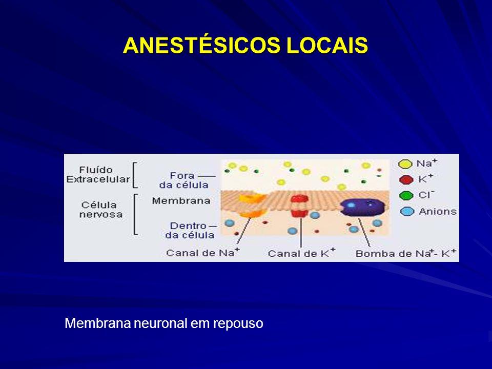 ANESTÉSICOS LOCAIS Membrana neuronal em repouso