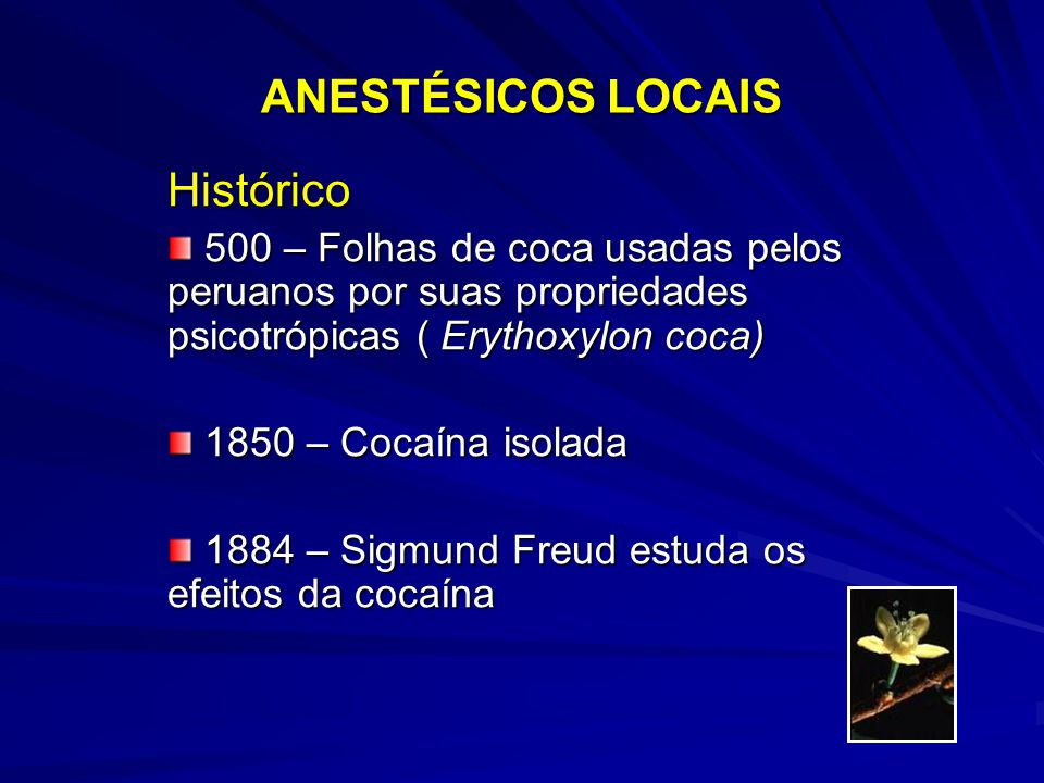 ANESTÉSICOS LOCAIS Histórico 500 – Folhas de coca usadas pelos peruanos por suas propriedades psicotrópicas ( Erythoxylon coca) 500 – Folhas de coca usadas pelos peruanos por suas propriedades psicotrópicas ( Erythoxylon coca) 1850 – Cocaína isolada 1850 – Cocaína isolada 1884 – Sigmund Freud estuda os efeitos da cocaína 1884 – Sigmund Freud estuda os efeitos da cocaína