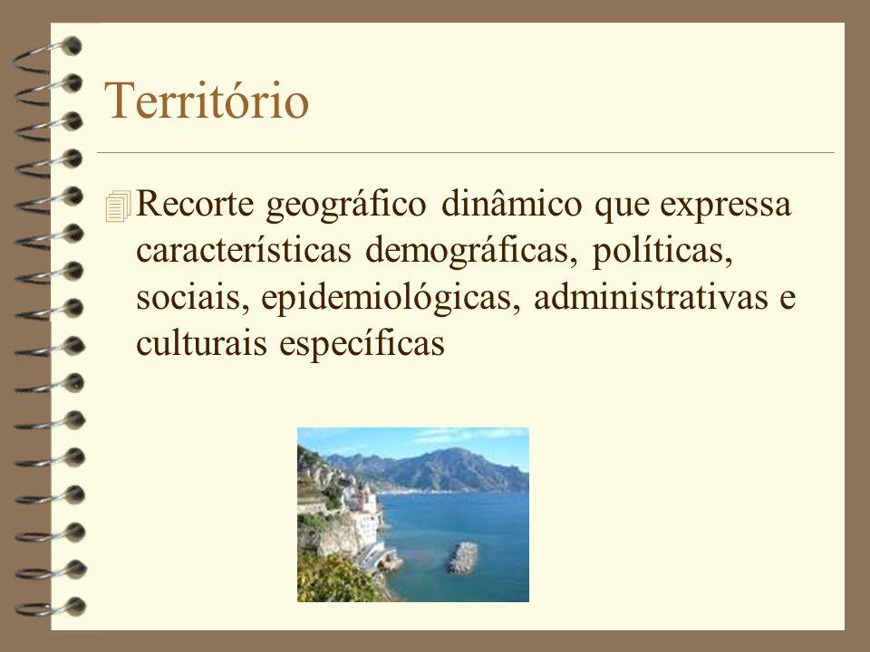 Territorialização 4 Processo de organização, conhecimento e estabelecimento de características de determinado território com vias à tomada de decisões estratégicas