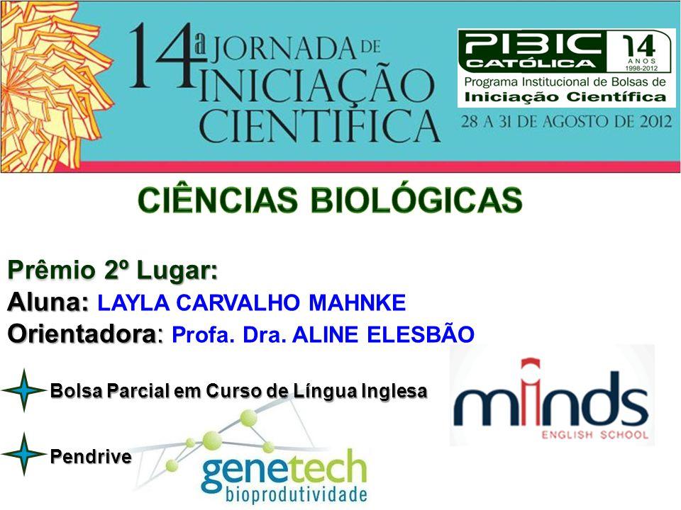 Prêmio 3º Lugar: Aluna: Aluna: CAROLINE BARBOSA RANGEL Orientador: Orientador: Prof.