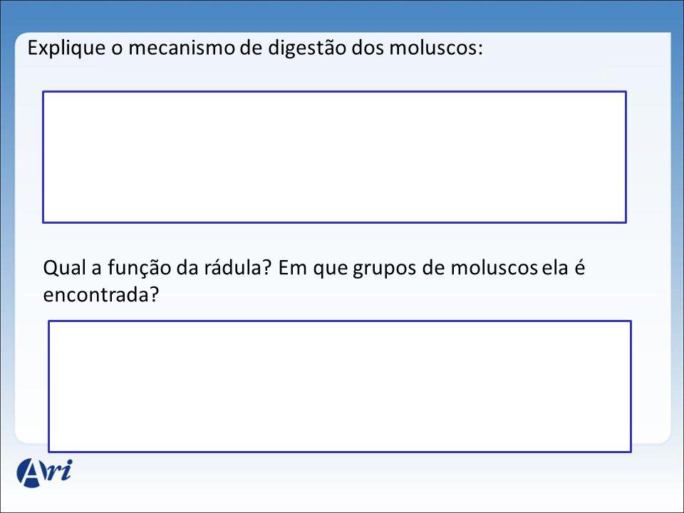 Explique o mecanismo de digestão dos moluscos: Qual a função da rádula? Em que grupos de moluscos ela é encontrada?
