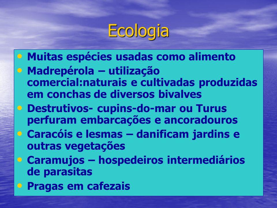 Ecologia Muitas espécies usadas como alimento Madrepérola – utilização comercial:naturais e cultivadas produzidas em conchas de diversos bivalves Dest
