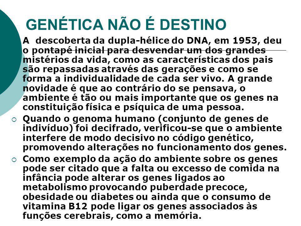 GENÉTICA NÃO É DESTINO  A descoberta da dupla-hélice do DNA, em 1953, deu o pontapé inicial para desvendar um dos grandes mistérios da vida, como as características dos pais são repassadas através das gerações e como se forma a individualidade de cada ser vivo.