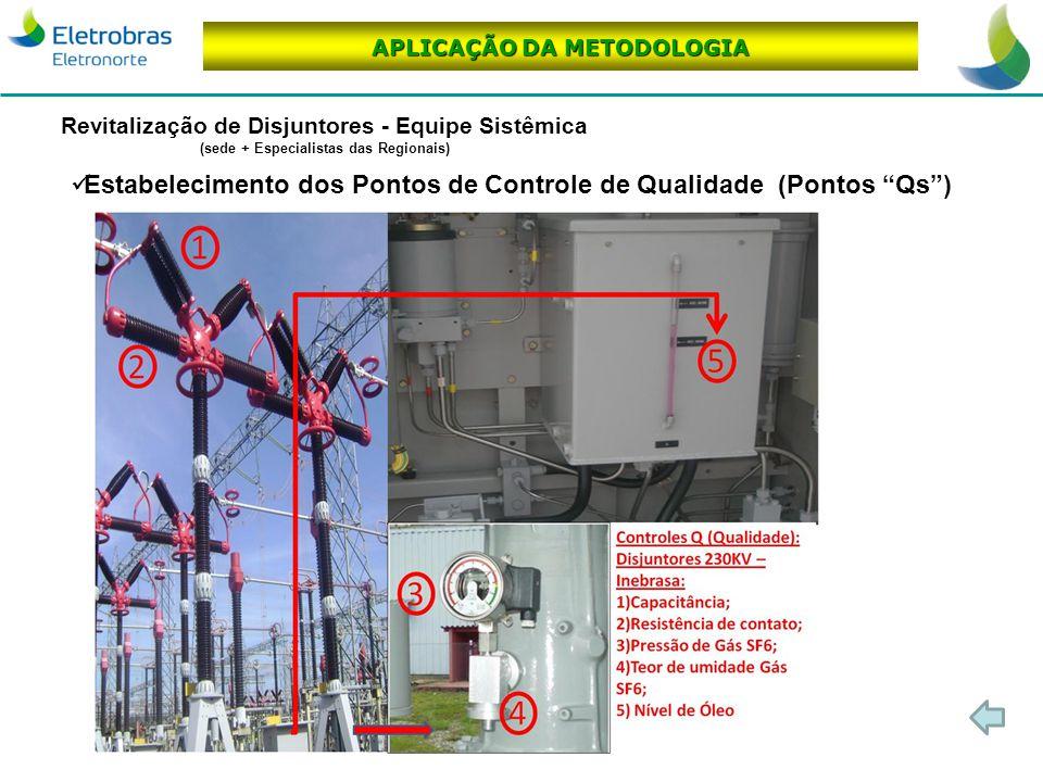 Gestão da Manutenção de Ativos da Transmissão APLICAÇÃO DA METODOLOGIA Revitalização de Disjuntores - Equipe Sistêmica (sede + Especialistas das Regio