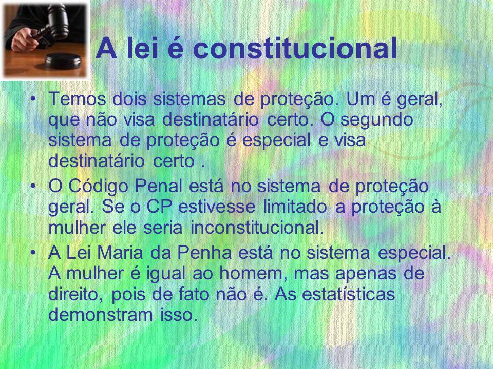 A lei é constitucional Temos dois sistemas de proteção. Um é geral, que não visa destinatário certo. O segundo sistema de proteção é especial e visa d