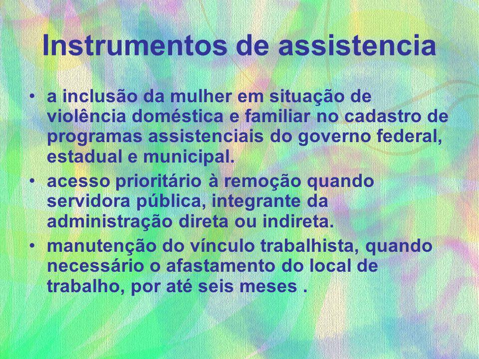 Instrumentos de assistencia a inclusão da mulher em situação de violência doméstica e familiar no cadastro de programas assistenciais do governo feder