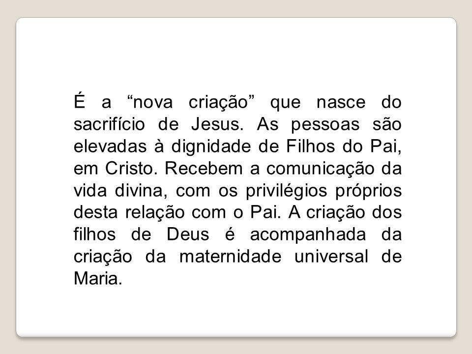 """É a """"nova criação"""" que nasce do sacrifício de Jesus. As pessoas são elevadas à dignidade de Filhos do Pai, em Cristo. Recebem a comunicação da vida di"""