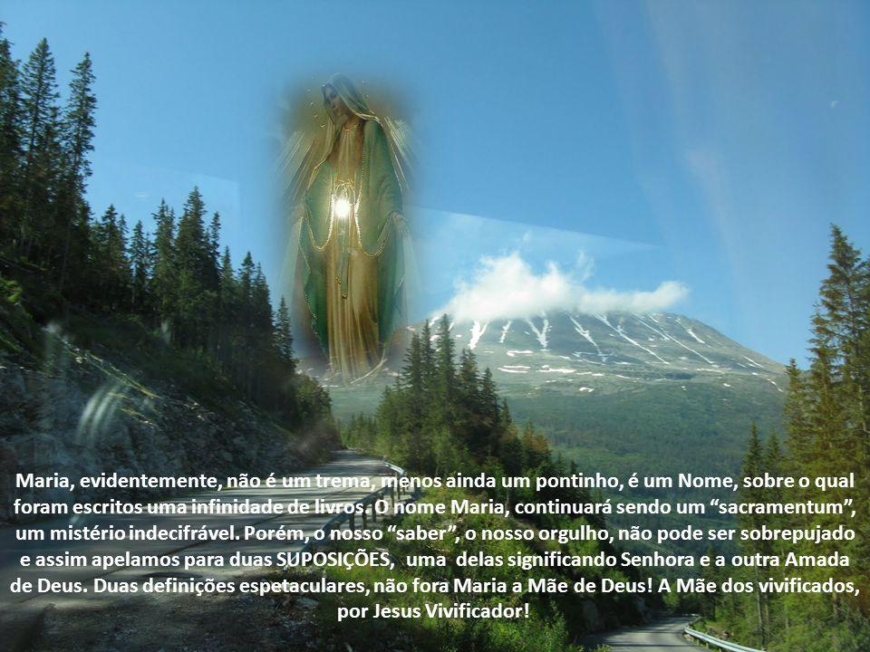 REFLEXÕES Para os que foram agraciados em ler a Bíblia no seu original, perceberam que o nome MARIA, está na primeira página.