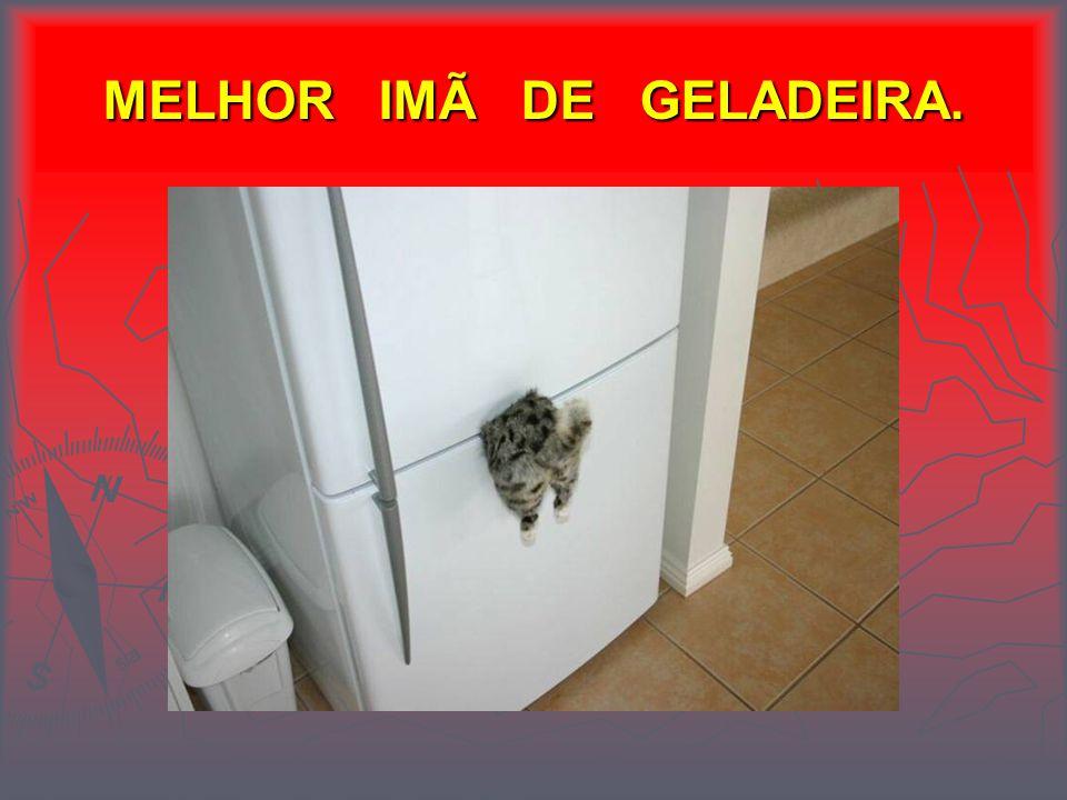 MELHOR IMÃ DE GELADEIRA.